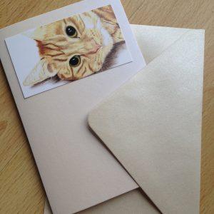 Simba Card